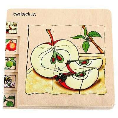Lagen-Puzzle - Apfel