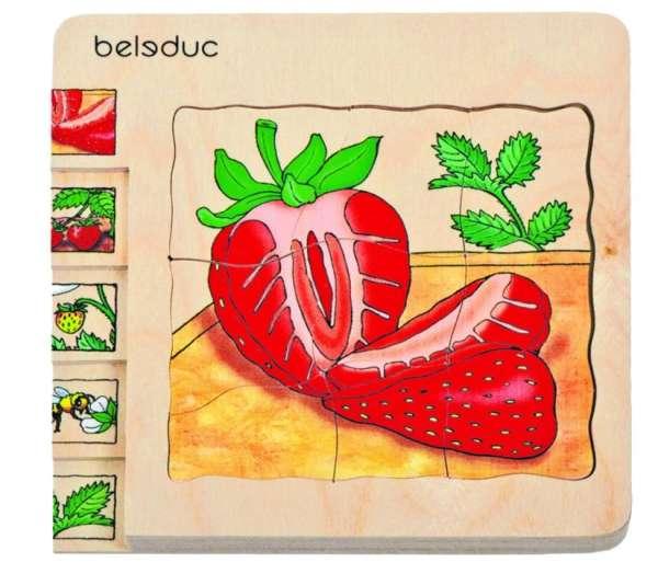 Lagen-Puzzle Erdbeere